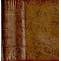 Cornelii Schrevelii Lexicon manuale græco-latinum