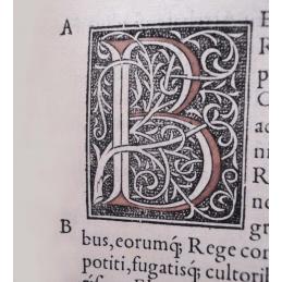 Pauli Aemylii Veronensis, historici clarissimi, De rebus gestis francorum...