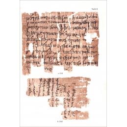 Papyri aus Hermupolis